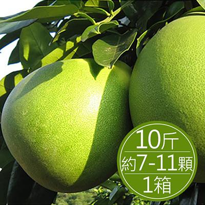 30年麻豆文旦(10斤)*1箱