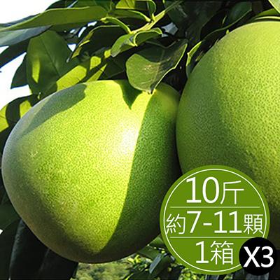 30年麻豆文旦(10斤)*3箱