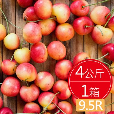 美國空運9.5R草莓白櫻桃4公斤/箱