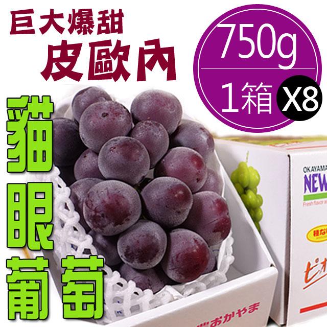 日本直送岡山皮歐內貓眼葡萄(750g)*8箱
