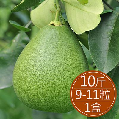 瑞穗鶴岡老欉文旦(10斤)超值禮盒