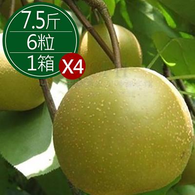 嚴選台灣巨無霸750g黃金高接梨(6顆)*4箱