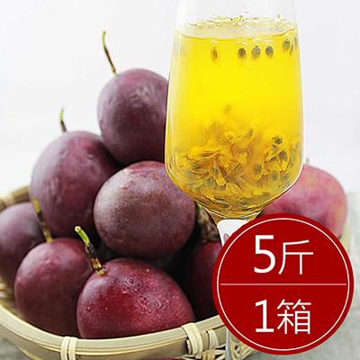 南投埔里傳統百香果(5台斤±5%/箱)