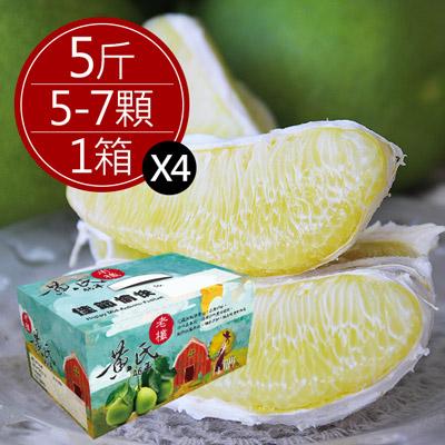 瑞穗黃氏40年老欉文旦精品禮盒(5斤/盒,共4盒)
