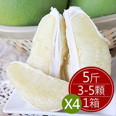 現貨台南麻豆40年老欉文旦(5斤/盒,共4盒)