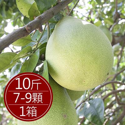 現貨台南麻豆40年老欉文旦(10斤/盒)