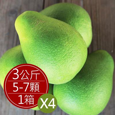 台南麻豆40年老欉文旦(5~7顆/盒,共4盒)