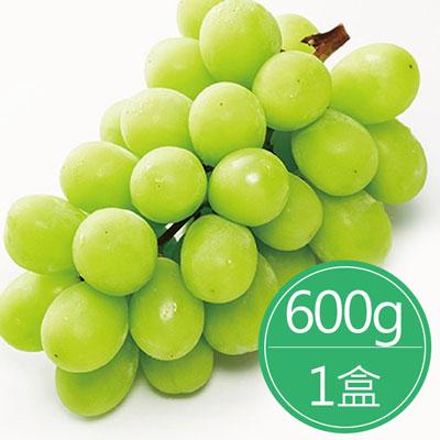 韓國麝香綠葡萄禮盒(600g/盒)