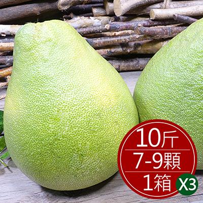 麻豆文旦禮盒(10斤/7-9顆)*3箱