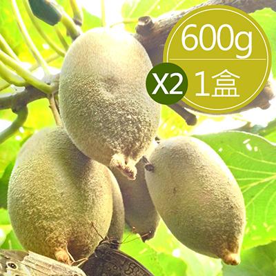 台灣黃金奇異果(600g±5%/盒,共2盒)