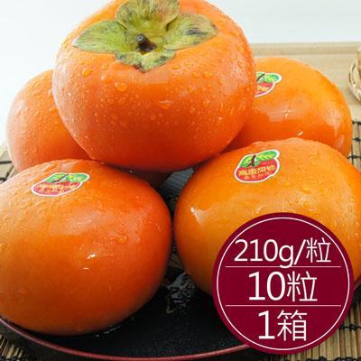 摩天嶺甜柿中顆(210g*10粒)*1箱