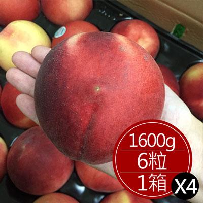道格拉斯水蜜桃(6顆)*4箱