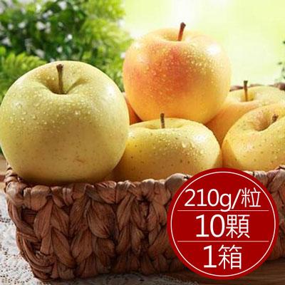 日本青森牛奶蘋果(10顆)*1箱