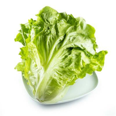 大陸A菜(大陸妹)220公克±10%