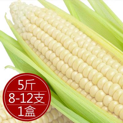 水果玉米 (8-12支/5斤/盒)