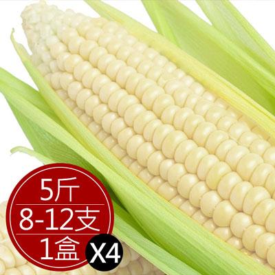 水果玉米 (8-12支/5斤/4盒)
