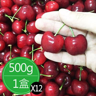 空運鮮採XJ9.5Row櫻桃禮盒(500g)*12