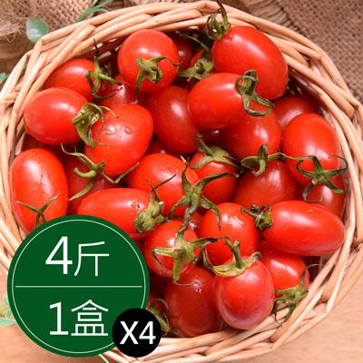 美濃溫室玉女番茄 (4斤/4盒)