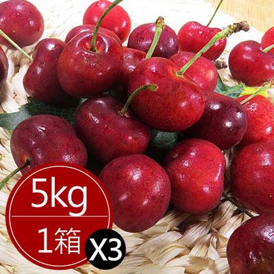 智利櫻桃超大P級(5公斤)*3箱