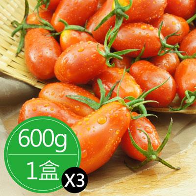 溫室薄皮蜜糖玉女小番茄(600g/盒)*3