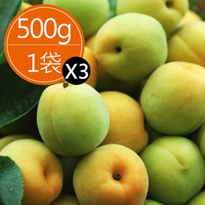 台灣南投信義鄉青梅(500克)*3袋