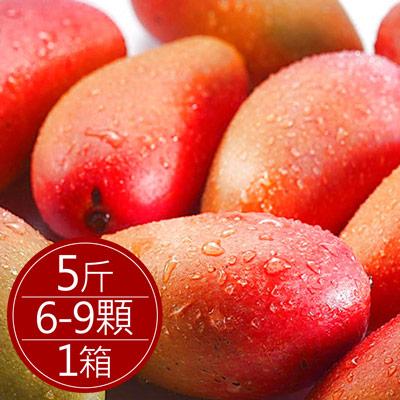 枋寮愛文芒果大顆(5斤/6-9顆)*1箱
