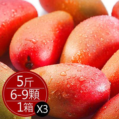 枋寮愛文芒果大顆(5斤/6-9顆)*2箱