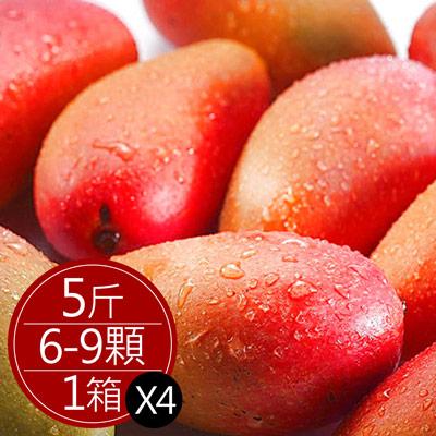 枋寮愛文芒果大顆(5斤/6-9顆)*4箱