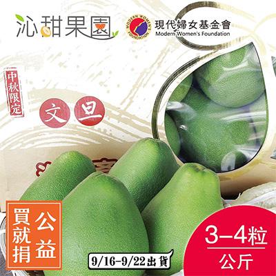 頂級文旦小禮盒3-4粒裝/公斤