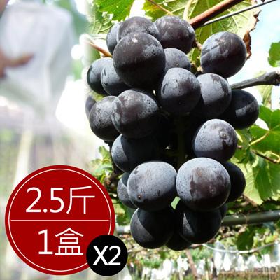 彰化大村巨峰葡萄(2.5斤/盒,共2盒)