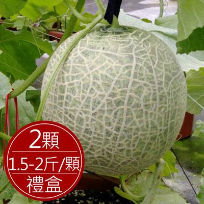 台中東勢 網紋洋香瓜(2顆/禮盒裝)