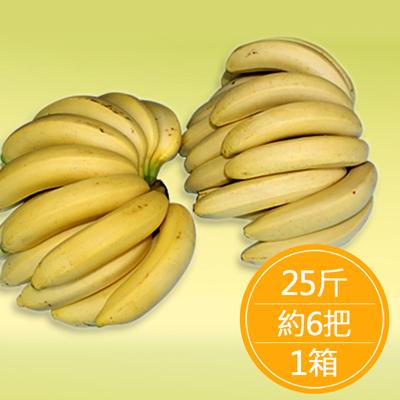高雄旗山 特級安全香蕉(25斤/約6把/箱)