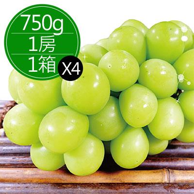 日本岡山縣晴王麝香葡萄(約750g)*4房