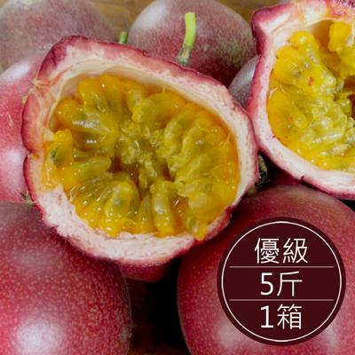 南投埔里 自然農法百香果(優級)(5斤/箱)
