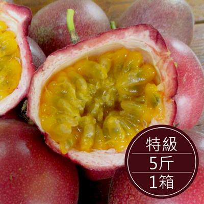 南投埔里 自然農法百香果(特級)(5斤/箱)