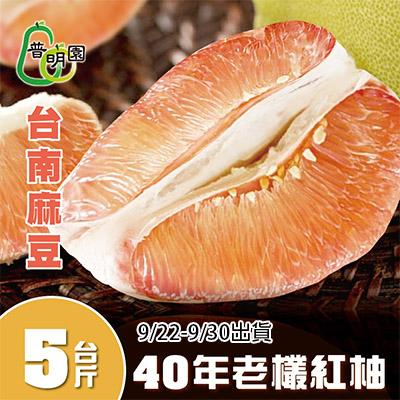 嚴選台南麻豆40年老欉紅柚(5台斤/箱)