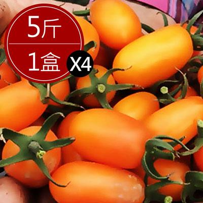 美濃超人氣宋媽媽橙蜜香小番茄(5斤±10%*4盒)