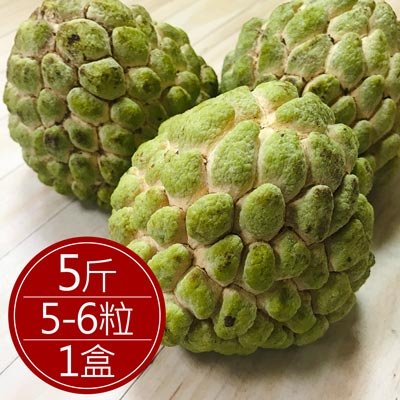 外銷等級台東釋迦(5斤/約5-6粒/盒)