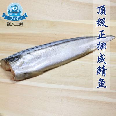 薄鹽挪威鯖魚片20片組(160g±10%/包)